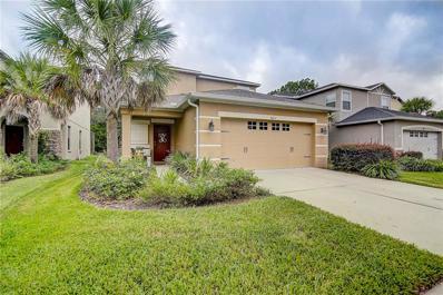 7823 Tuscany Woods Drive, Tampa, FL 33647 - MLS#: T3135369