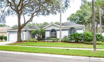 18911 Edinborough Way, Tampa, FL 33647 - MLS#: T3135645