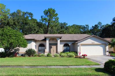 26059 Loblolly Lane, Land O Lakes, FL 34639 - MLS#: T3135839
