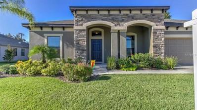 2909 Shetland Ridge Drive, Valrico, FL 33596 - MLS#: T3135853