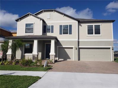 11733 Sunburst Marble Road, Riverview, FL 33579 - #: T3135962