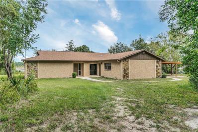 6379 Alderwood Street, Spring Hill, FL 34606 - MLS#: T3136038