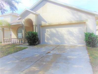 10124 Coldwater Loop, Land O Lakes, FL 34638 - MLS#: T3136254