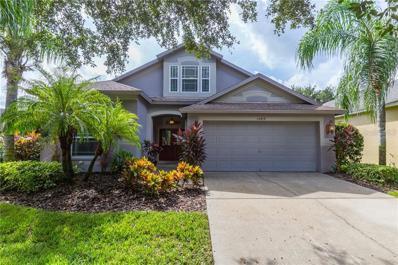 15419 Martinmeadow Drive, Lithia, FL 33547 - MLS#: T3136258