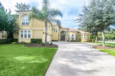 6217 Wild Orchid Drive, Lithia, FL 33547 - #: T3136281