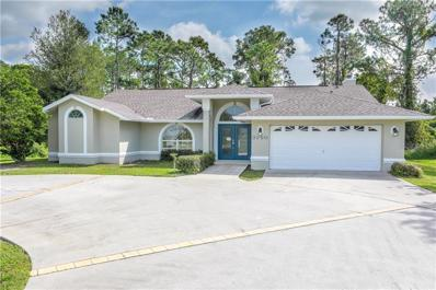 3260 Deer Lick Court, Kissimmee, FL 34746 - MLS#: T3136347