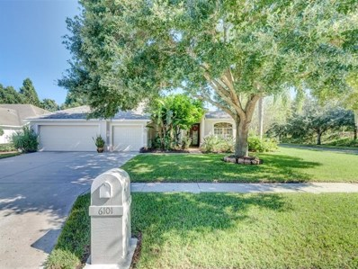 6101 Savoy Circle, Lutz, FL 33558 - MLS#: T3136368
