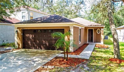 18132 Birdwater Drive, Tampa, FL 33647 - MLS#: T3136416