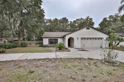 11415 McMullen Loop, Riverview, FL 33569 - MLS#: T3136546