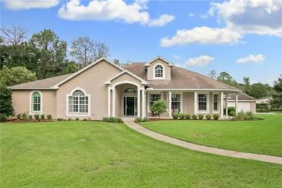 16702 Lake Eveland Place, Lutz, FL 33558 - MLS#: T3136580