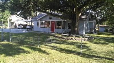 1220 N Pine Lake Drive, Tampa, FL 33612 - #: T3136654