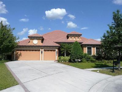 20121 Shady Hill Lane, Tampa, FL 33647 - MLS#: T3136897