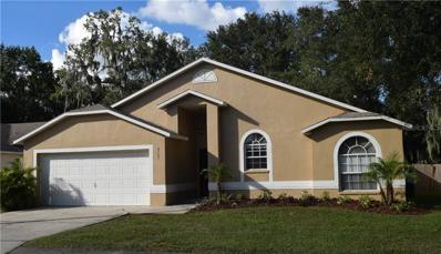 2707 Sundance Circle, Mulberry, FL 33860 - MLS#: T3136951