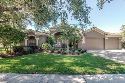 16712 Eagle Oak Drive, Odessa, FL 33556 - MLS#: T3137127