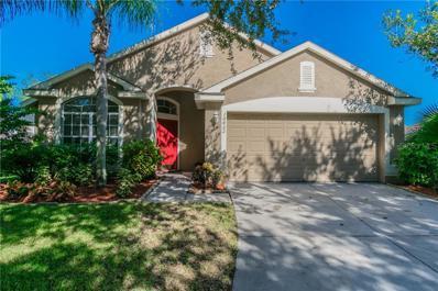 10422 Lightner Bridge Drive, Tampa, FL 33626 - MLS#: T3137129