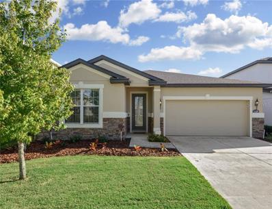 11229 Spring Point Circle, Riverview, FL 33579 - MLS#: T3137148