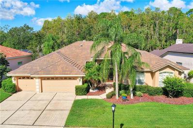 1538 Lockmeade Place, Oldsmar, FL 34677 - MLS#: T3137252