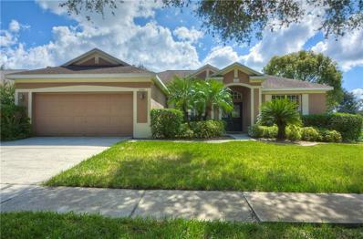 2201 Morganside Way, Valrico, FL 33596 - MLS#: T3137393