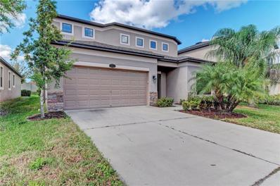 11517 Blue Crane Street, Riverview, FL 33569 - MLS#: T3137619