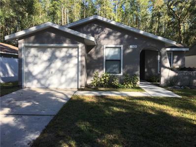 12421 Hidden Brook Drive, Tampa, FL 33624 - #: T3137622
