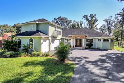 18703 Hanna Road, Lutz, FL 33549 - MLS#: T3137757