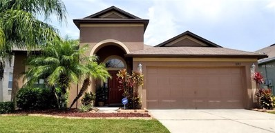 8357 Moccasin Trail Drive, Riverview, FL 33578 - MLS#: T3137863