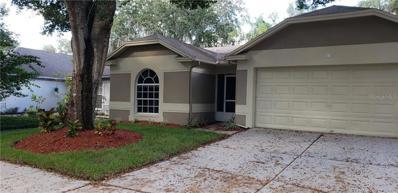 1132 Bloom Hill Avenue, Valrico, FL 33596 - MLS#: T3138199