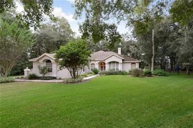 6029 Hammock Hill Avenue, Lithia, FL 33547 - MLS#: T3138290