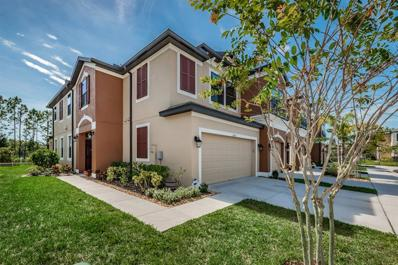 11450 Crowned Sparrow Lane, Tampa, FL 33626 - MLS#: T3138320