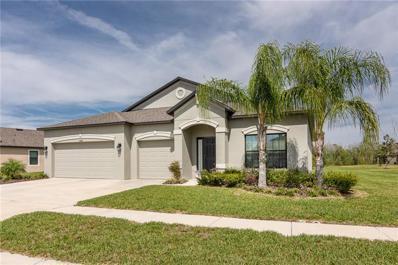 18741 Cortes Creek Boulevard, Spring Hill, FL 34610 - #: T3138466