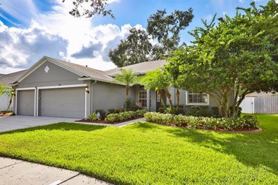 8915 Aberdeen Creek Circle, Riverview, FL 33569 - MLS#: T3138651