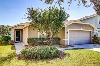 12426 Rustic View Court, Tampa, FL 33635 - #: T3139172