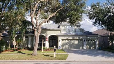 19338 Wind Dancer Street, Lutz, FL 33558 - #: T3139179
