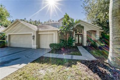 6007 Catlin Drive, Tampa, FL 33647 - MLS#: T3139315