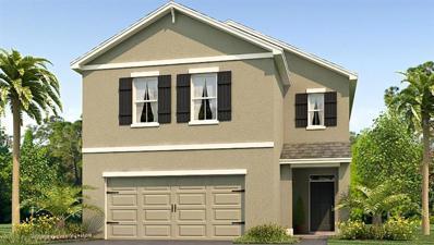 10215 Mangrove Well Road, Sun City Center, FL 33573 - MLS#: T3139335