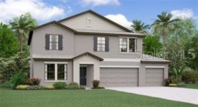 11417 Carlton Fields Drive, Riverview, FL 33579 - MLS#: T3139391