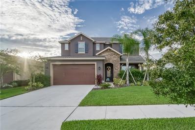 4569 Esperanza Court, Wesley Chapel, FL 33543 - MLS#: T3139398