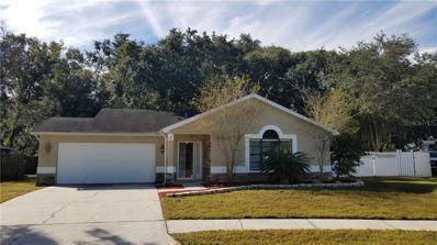 2917 Wilder Creek Circle, Plant City, FL 33566 - MLS#: T3139541