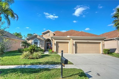 27045 Firebush Drive, Wesley Chapel, FL 33544 - MLS#: T3139812