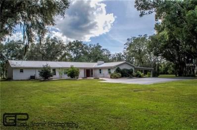 19115 Livingston Avenue, Lutz, FL 33559 - MLS#: T3139845