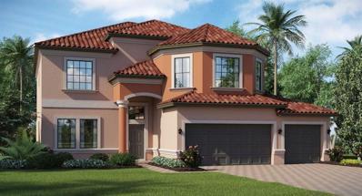 11906 Cinnamon Fern Drive, Riverview, FL 33579 - MLS#: T3139866