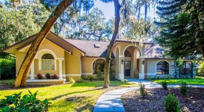 360 10TH Avenue S, Safety Harbor, FL 34695 - MLS#: T3139916
