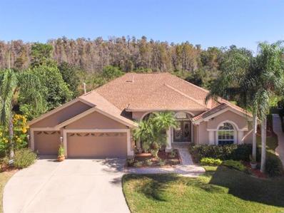 19336 Autumn Woods Avenue, Tampa, FL 33647 - MLS#: T3140025