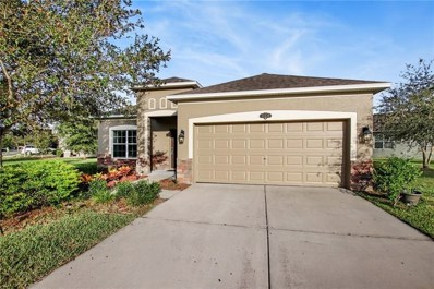 10635 Pictorial Park Drive, Tampa, FL 33647 - #: T3140084