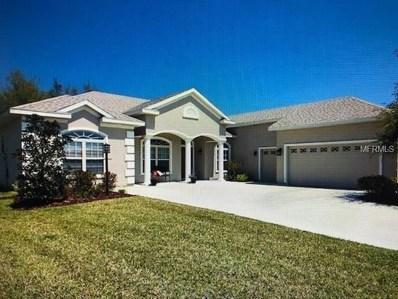 11024 SE 168TH Loop, Summerfield, FL 34491 - MLS#: T3140142