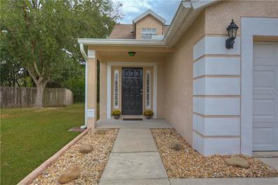 6604 Northhaven Court, Riverview, FL 33578 - MLS#: T3140183