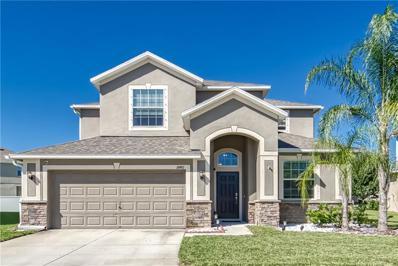 18481 Whyteleafe Court, Land O Lakes, FL 34638 - MLS#: T3140197