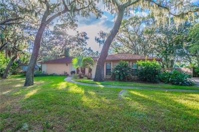11205 Killearn Court, Riverview, FL 33569 - #: T3140205