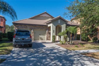 20306 Heritage Point Drive, Tampa, FL 33647 - MLS#: T3140286