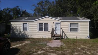 12119 Terra Ceia Avenue, New Port Richey, FL 34654 - #: T3140399
